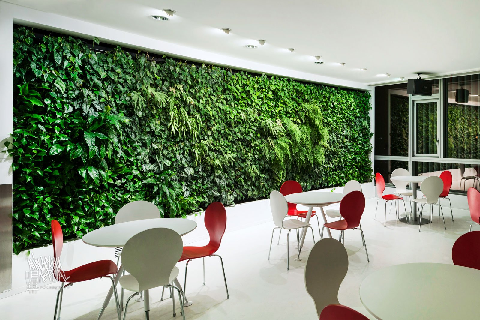 Mingzhu Nerval vertical living wall experts created a healthy nature workspace at H&M in Shanghai, 2012