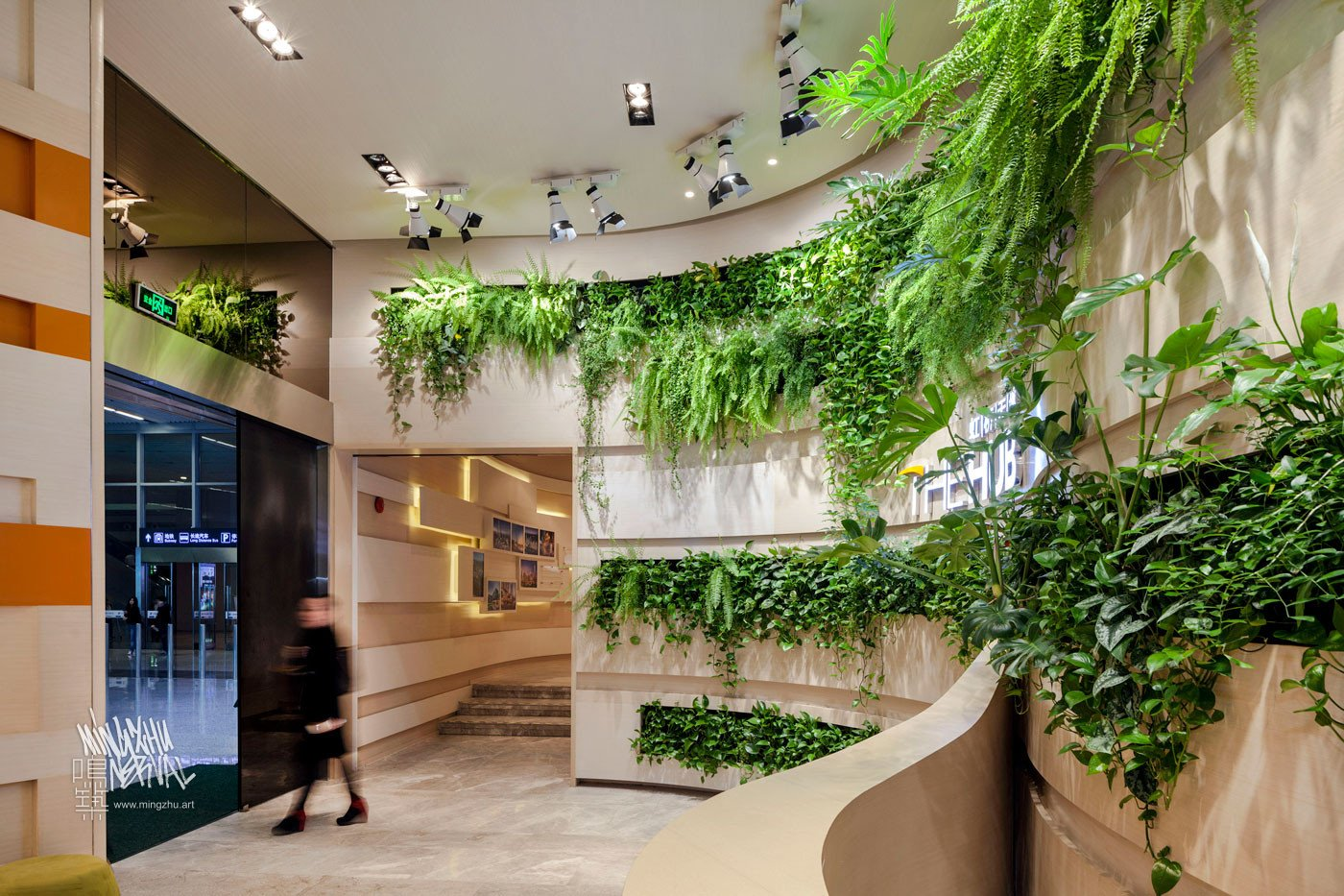 Mingzhu Nerval vertical living wall experts created the green living wall garden design at the Shui-On Showroom, The Hub in Shanghai, 2012