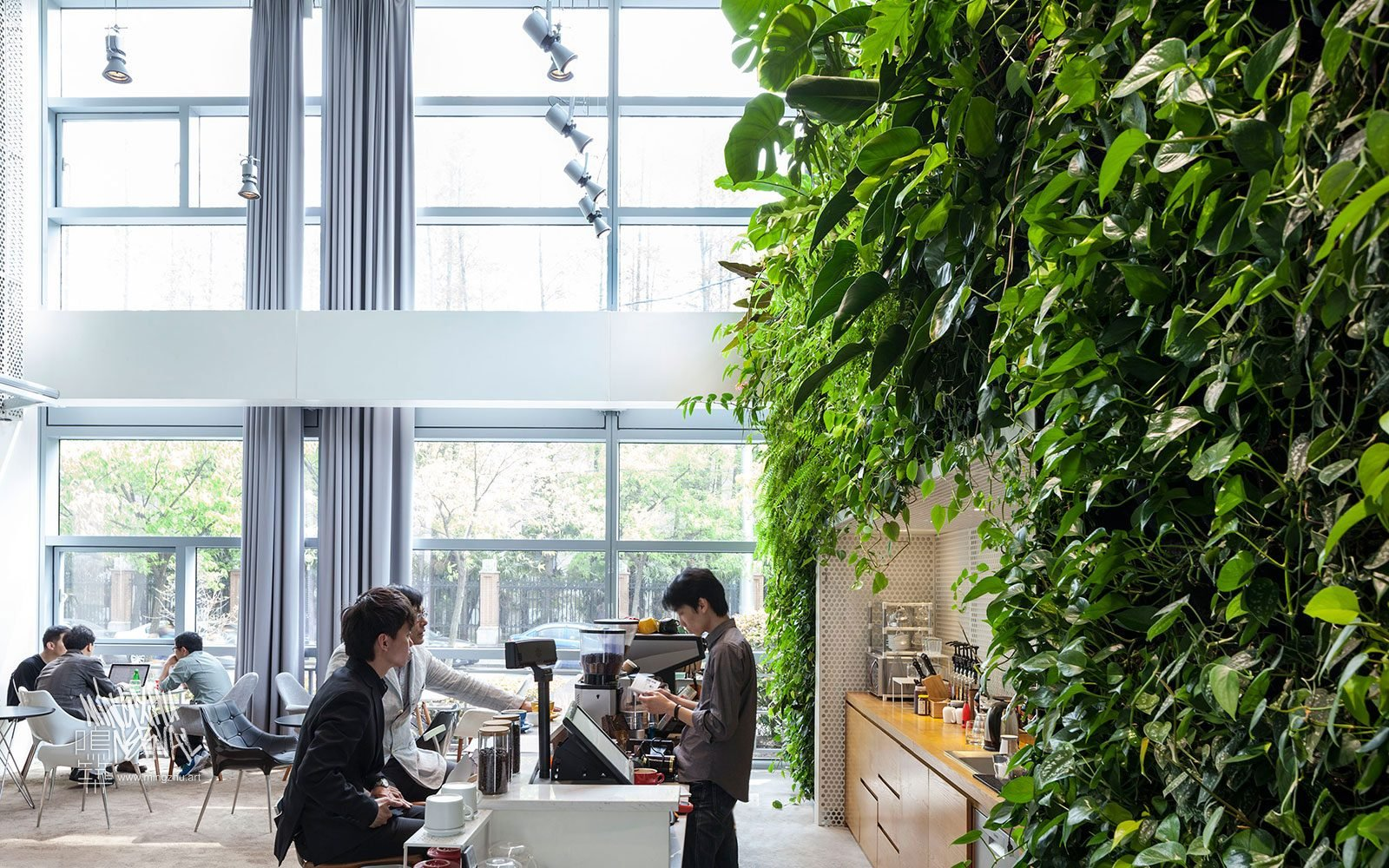 At Mingzhu Nerval, we thrive at creating the most beautiful vertical gardens in the world. For the Tongji International Design Center, we created a pretty living wall design - Shanghai, 2013.