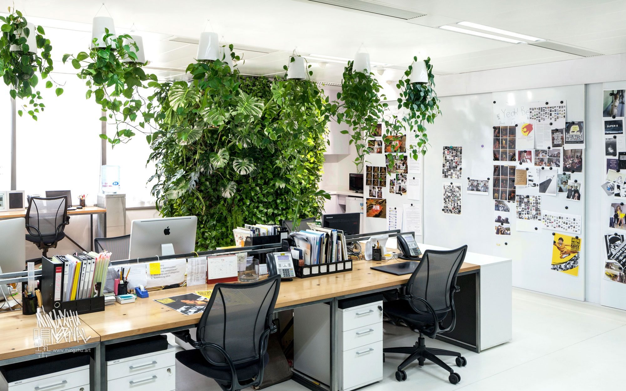 At Mingzhu Nerval, we thrive at creating the most beautiful vertical gardens in the world. For Landor, we created a pleasant living wall design - Shanghai, 2013.