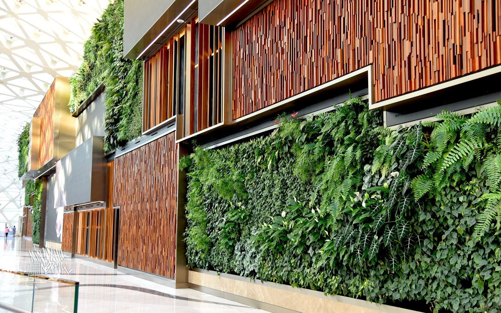 At Mingzhu Nerval, we thrive at creating the most beautiful vertical gardens in the world. For the Nature's Art MGM Cotai, we created a huge living wall design - Macao, 2018.