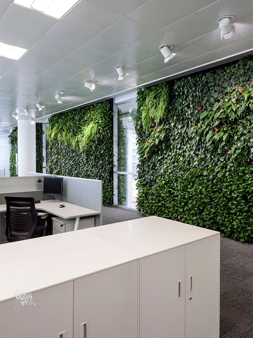 Mingzhu Nerval vertical living wall experts created a healthy nature workspace at ICBC in Shanghai, 2012
