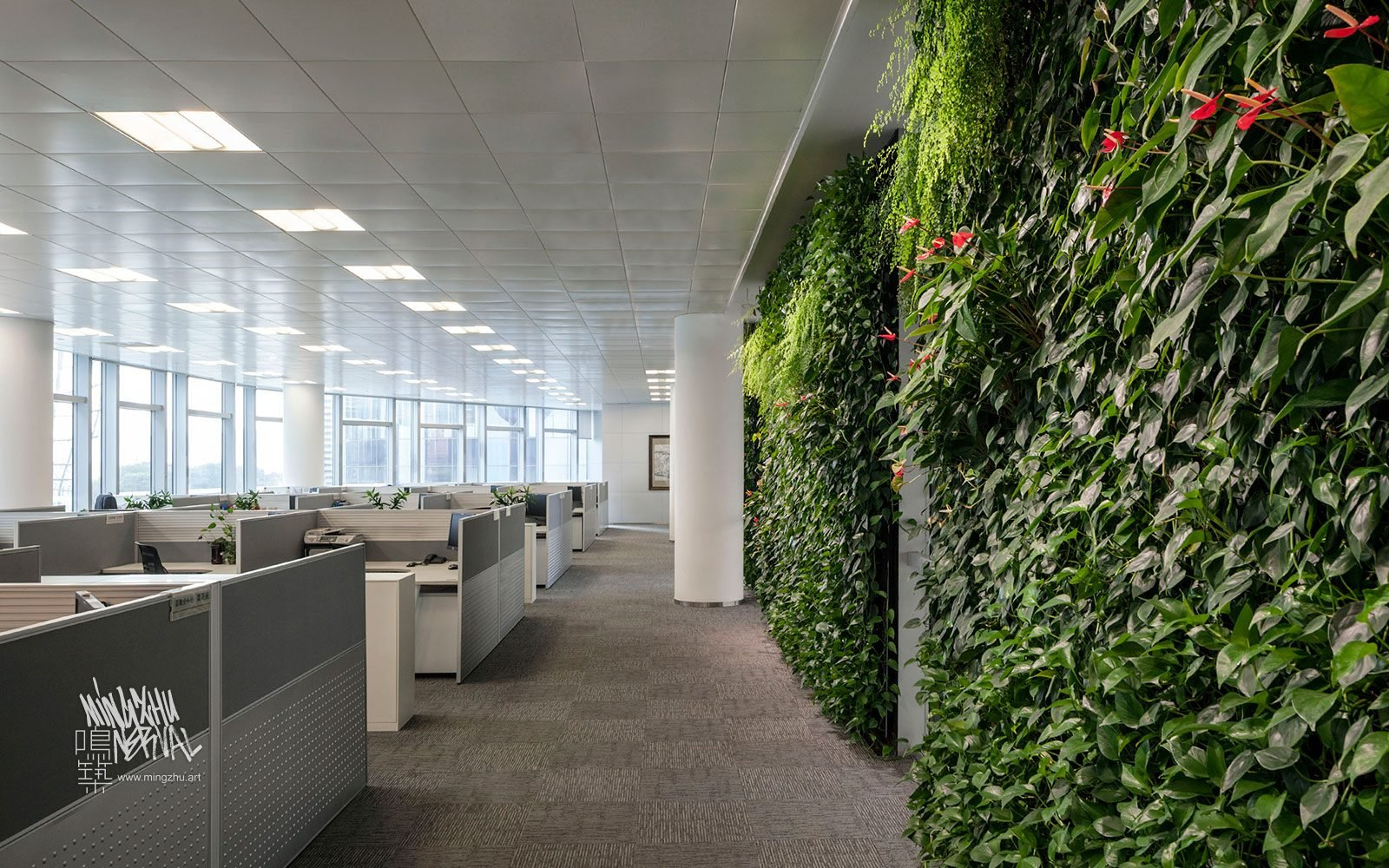 At Mingzhu Nerval, we thrive at creating the most beautiful vertical gardens in the world. For ICBC, we created a healthy nature workspace design - Shanghai, 2012.
