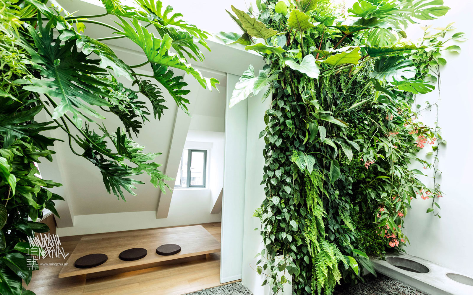 At Mingzhu Nerval, we thrive at creating the most beautiful vertical gardens in the world. For this private apartment, we created a fancy living wall design – Shanghai, 2013.