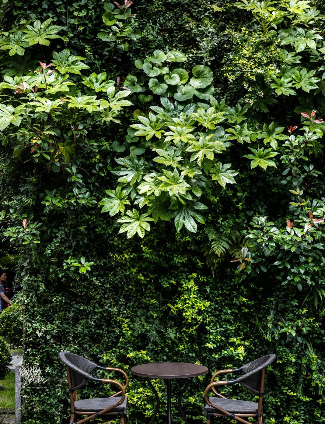 At Mingzhu Nerval, we thrive at creating the most beautiful vertical gardens in the world. For The Mixed Place, we created a wonderful outdoor living wall - Shanghai, 2014.