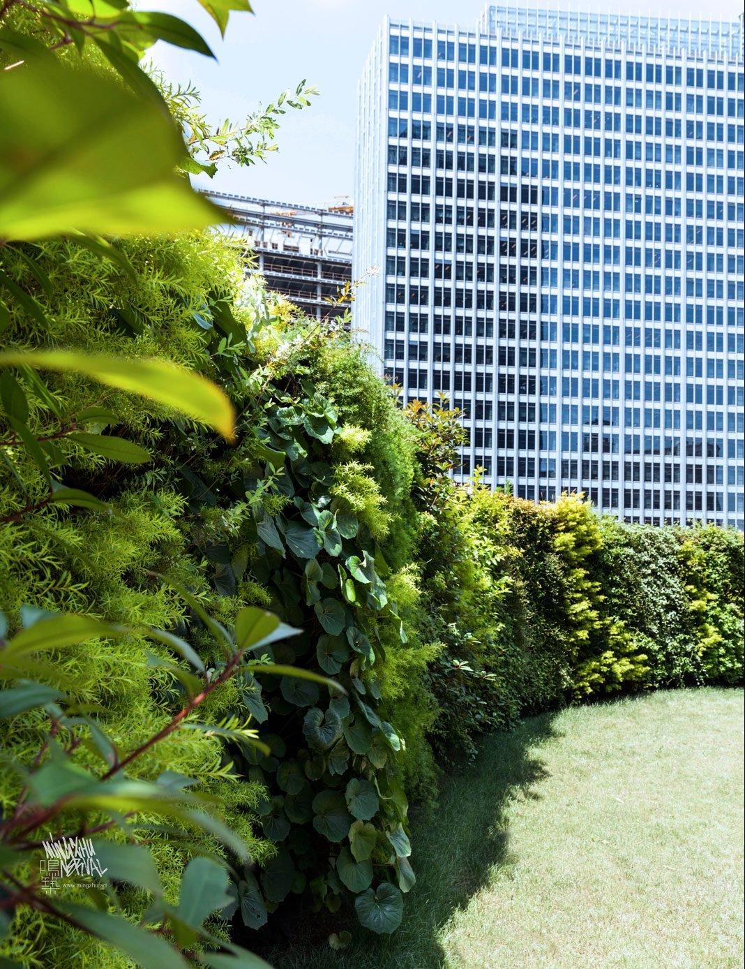 At Mingzhu Nerval, we thrive at creating the most beautiful vertical gardens in the world. For Ogilvy, we created a garden rooftop - Shanghai, 2016.