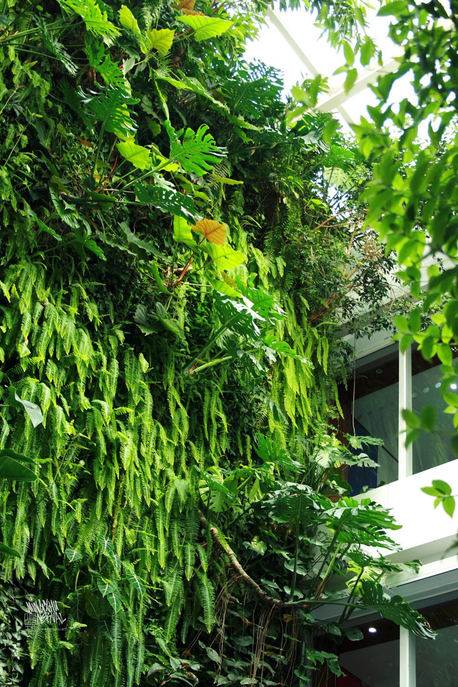 Mingzhu Nerval vertical living wall experts created the best garden design art at Clariant in Shanghai, 2010