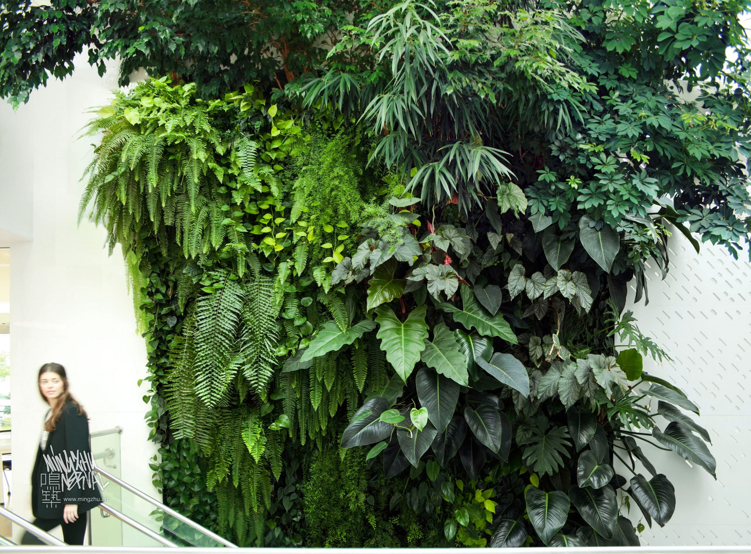 Mingzhu Nerval vertical living wall experts created the best garden design art at Nu Skin in Shanghai, 2013
