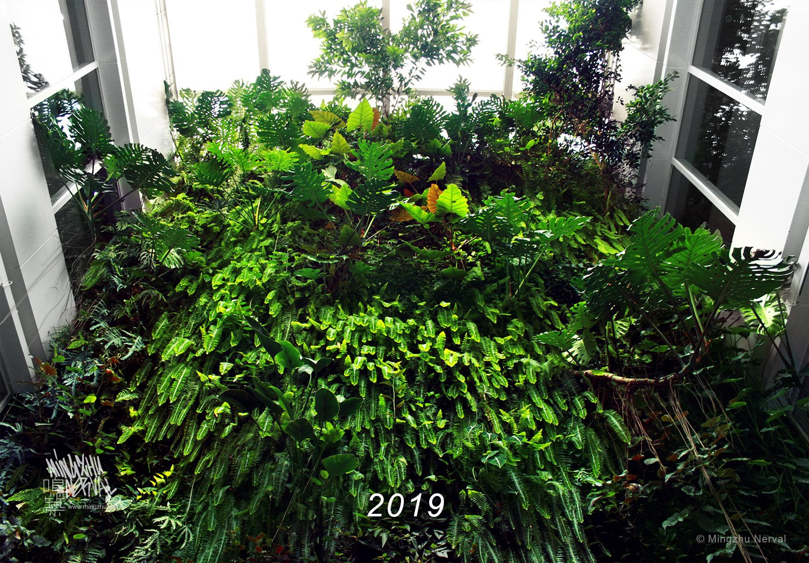 Mingzhu Nerval vertical living wall experts created the best garden design art at Clariant in Shanghai, 2019