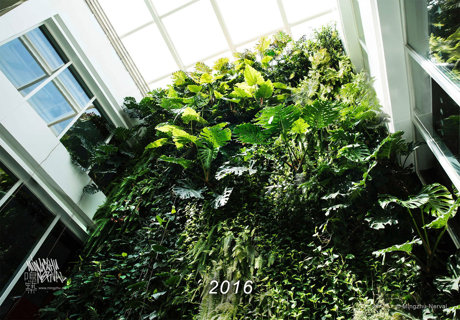 Mingzhu Nerval vertical living wall experts created the best garden design art at Clariant in Shanghai, 2016