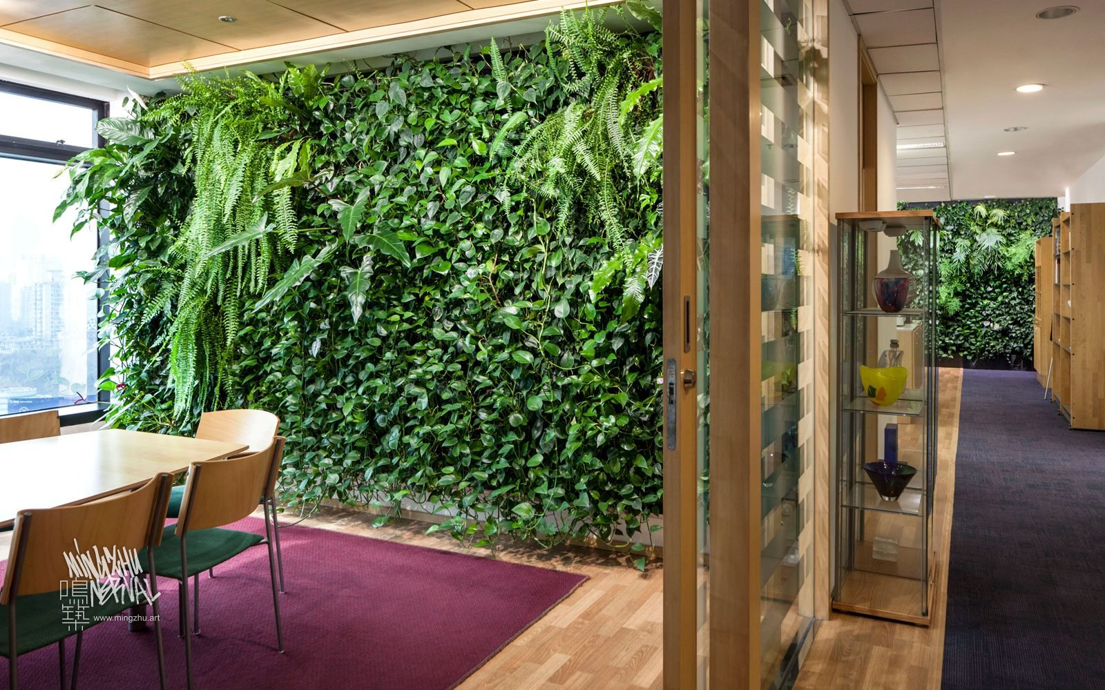 Mingzhu Nerval vertical living wall experts created a healthy nature workspace at the Swedish Consulate in Shanghai, 2012