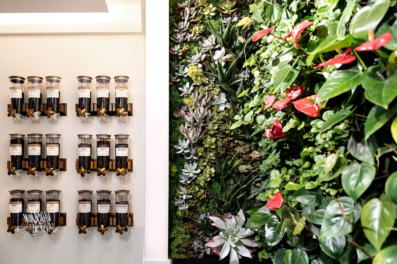 Mingzhu Nerval vertical living wall experts created the best garden design art at Peet's Coffee in Shanghai, 2018