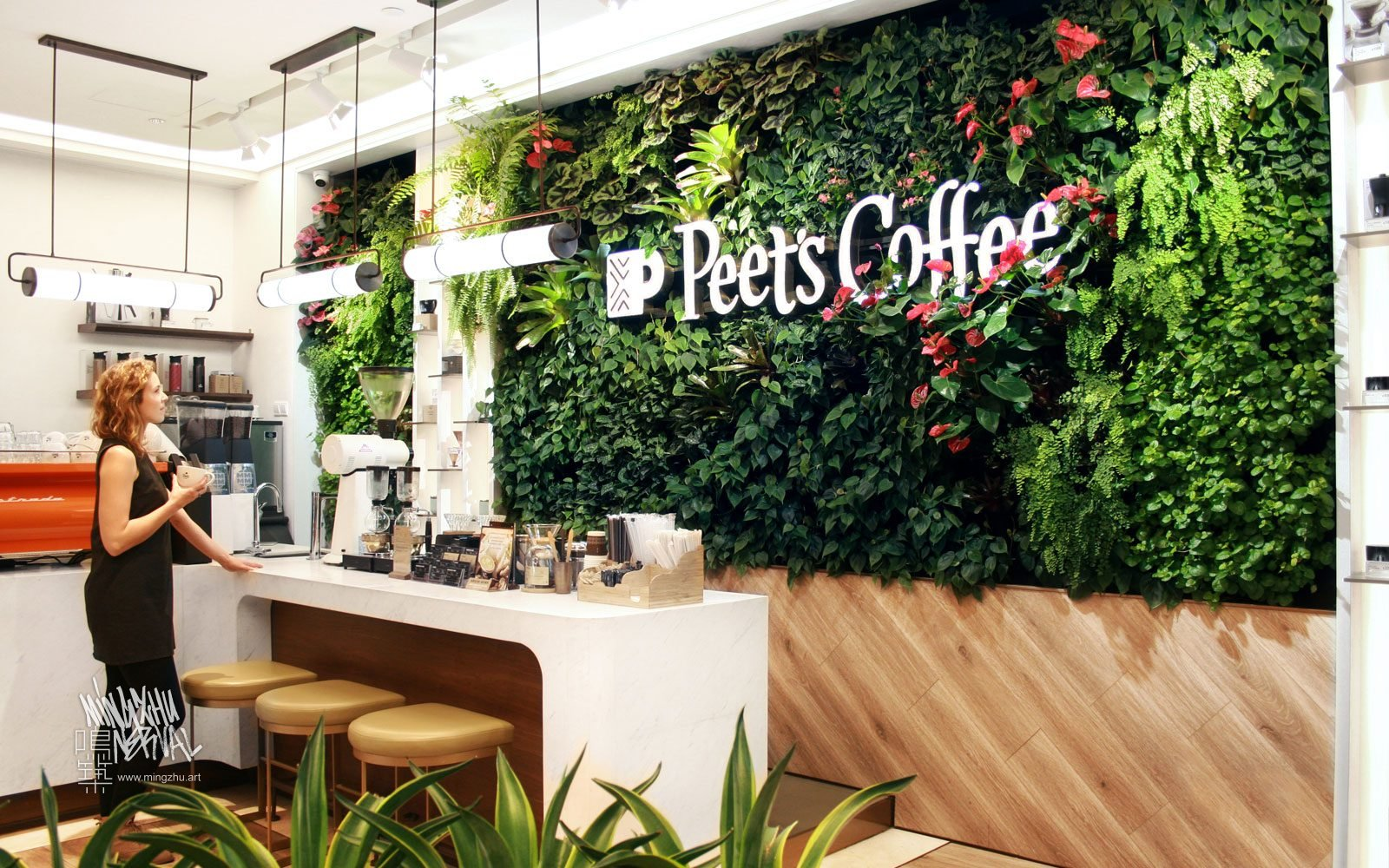 At Mingzhu Nerval, we thrive at creating the most beautiful vertical gardens in the world. For Peet's Coffee, we created a Californian living wall design – Shanghai, 2019.