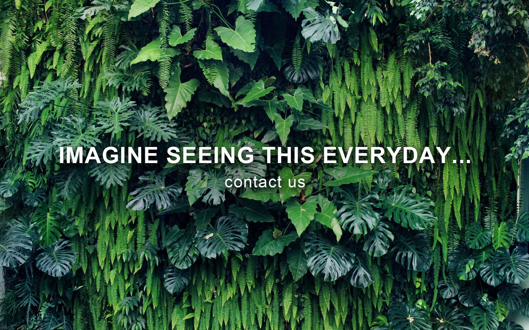 At Mingzhu Nerval, we thrive at creating the most beautiful vertical gardens in the world. The higher are your requirements, the more we're interested in working with you.
