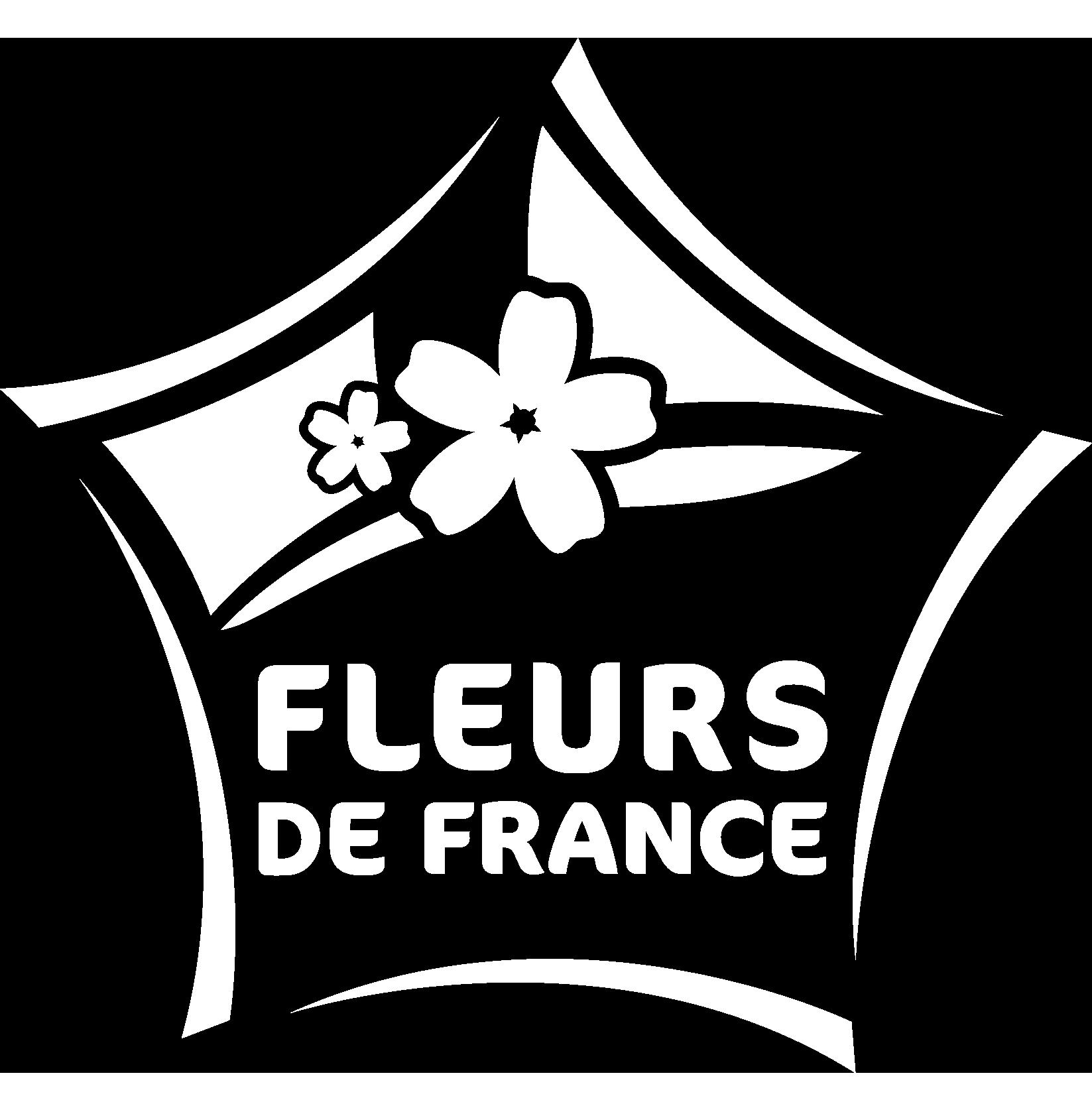 FLEURS_DE_FRANCE