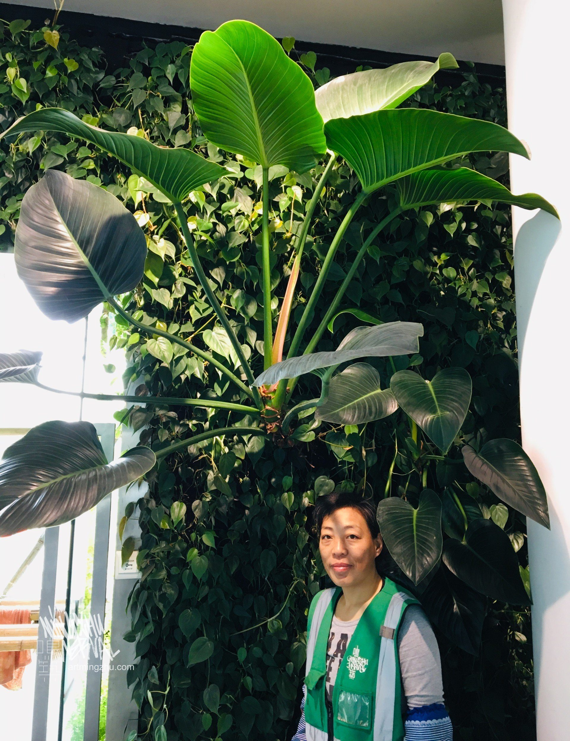 Art of the Garden by Mingzhu Nerval – ICBC